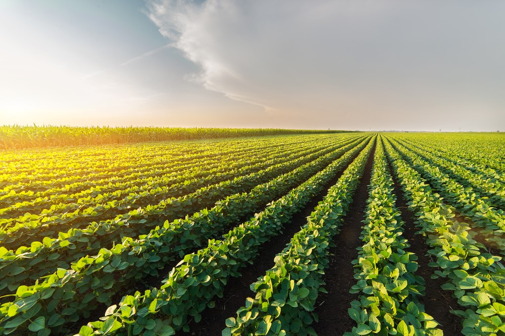 Is Now A Good Time To Invest In Agricultural Land?